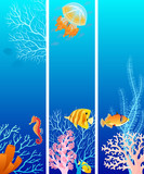 Vertical sea life banner - 40810493
