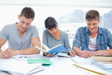 Three students study hard together