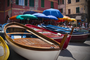 Docked Boats in Vernazza