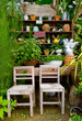 small garden with wooden chairs