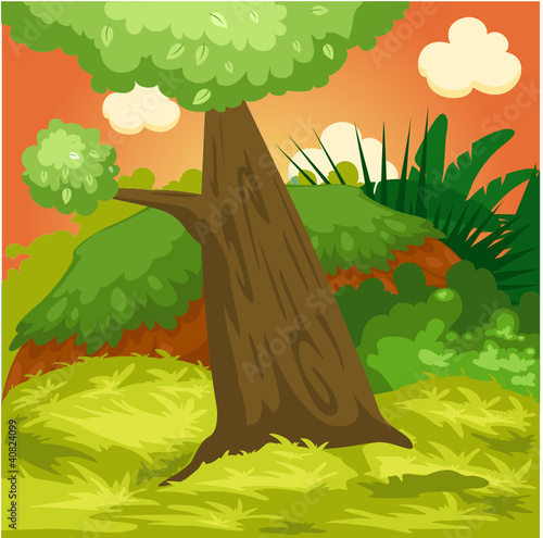 Foto op Canvas Bosdieren landscape natural forest