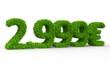 2999 € 3d Schrift gras