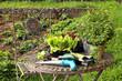 Gartenmöbel mit Pflanzen