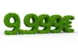 9999 € 3d Schrift gras