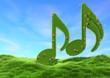 Musik in der freien Natur