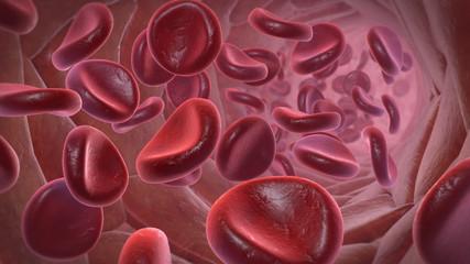 Blutbahn mit Erythrozyten (rote Blutkörperchen)