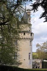 Donjon de la Belle au Bois Dormant