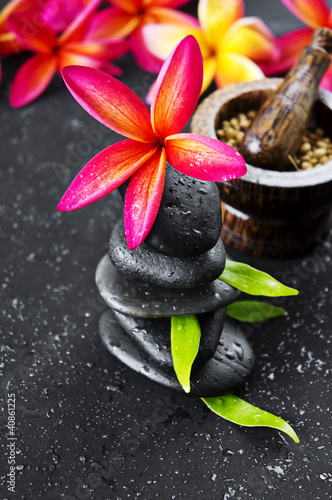 Pink Frangipani with zen stone for Spa concept
