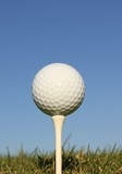 Golf Ball on a wooden tee