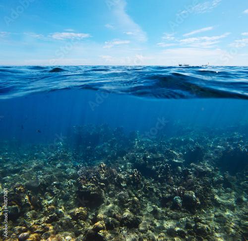 Foto op Plexiglas Indonesië Coral reef