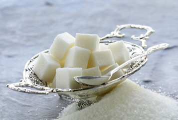 Several types of sugar - refined sugar and granulated sugar