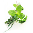 Herb Series - Mixed Herbs