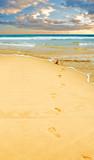 Fototapeta wybrzeże - slad - Morze / Ocean