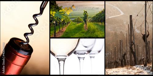 Display über Weißwein
