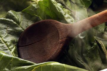Bietola Chard Acelga 莙薘菜