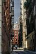 obraz - New York city buil...