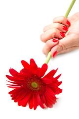 mano di donna con smalto rosso e fiore