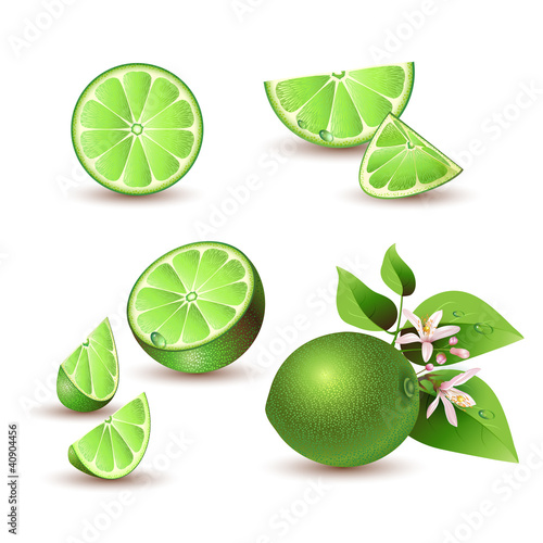 Fresh lime with flowers, leaves and lime slices