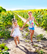 Children running across sunflower field outdoor.