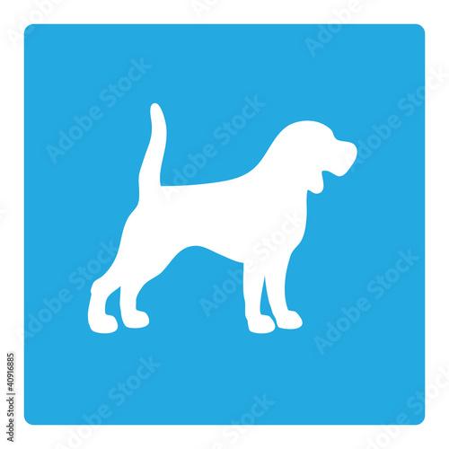 dog outline on blue background