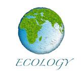 ecosystem in danger poster