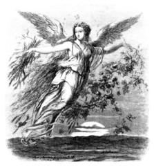 Beautiful Angel - 19th century