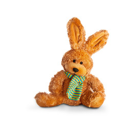 frohe ostern - osterhase