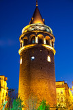 Galata Towers at the Istanbul Turkey 2