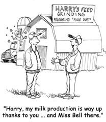 Dairy Cow Milk Production is Up