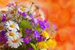 Blumenstrauss,Margeriten
