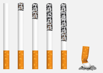 Smoldering, exhibited in a row, cigarettes.