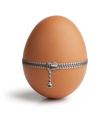 Egg, buttoned with a zipper