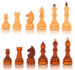 Chess. a group of white and black wooden chess pieces