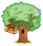 Animals in a tree