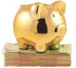 tirelire cochon doré sur liasse de billets