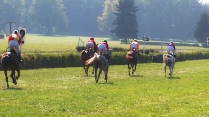 Horse races -slow motion