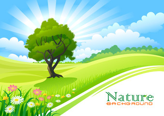Tree with Graphic Wave and Flowing Green Field