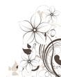 Fototapeten,vektor,floral,abstrakt,kunst