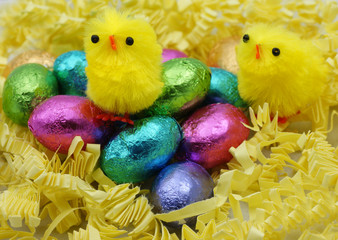 Chocolate Easter Eggs Chicks