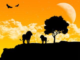 Ilustração com a silhueta de leões - savana africana