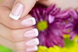 Fototapety French manicure made