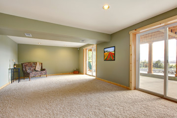 Ground level large new living room with green walls.