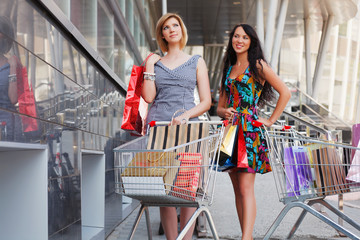 Young women with shopping cart