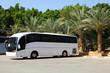 adventure bus tours
