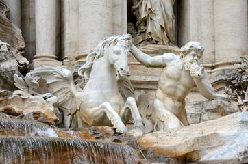 Cavallo Placido, Fontana di Trevi, Roma
