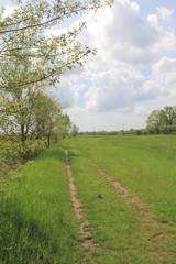 Sentiero nei campi del Parco delle Groane