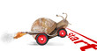 Speedy snail like car racer. Concept of speed and success - 40995661
