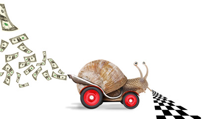 Speedy snail like car racer. Concept of speed and success.