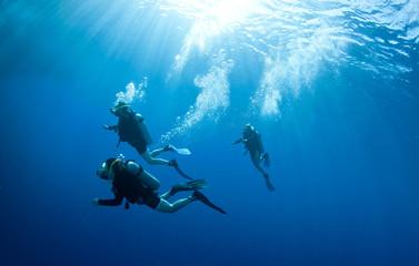 scuba divers accend from a dive