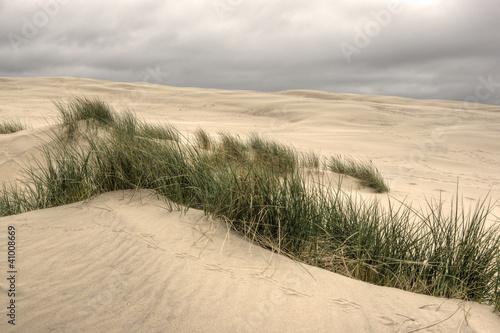 Fototapeten,natur,meer,urlaub,sand